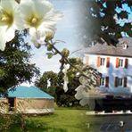 Séjour insolite & gourmand dans les Pyrénées